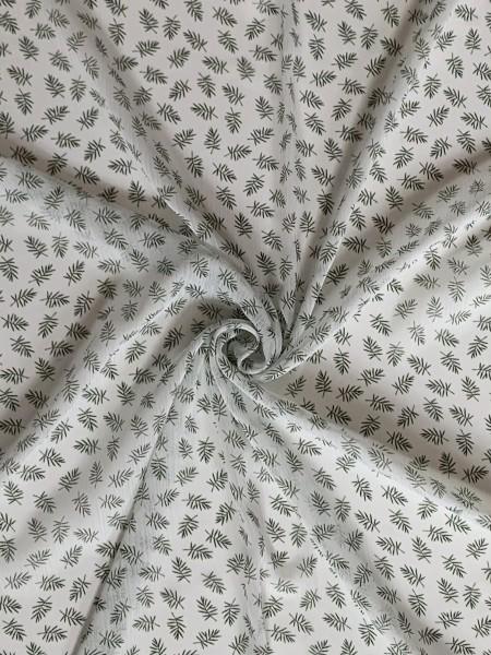 Palmzweige transparent